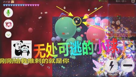 球球大作战: 无处可逃的小球竟有200多盾, 开心来的太突然了!