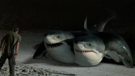 四对情侣在小岛游玩时, 却遇到了六个头的鲨鱼, 结果全被吃了