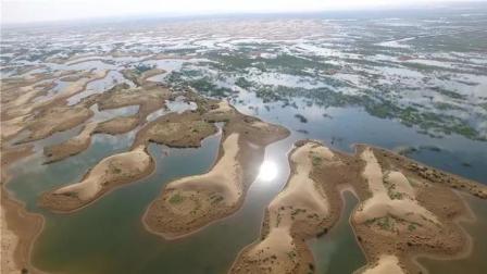 世界最大沙漠1天下9年雨! 沙漠变湖泊, 美国紧急动用侦察卫星