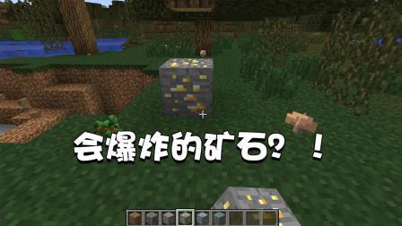 我的世界特别篇64: 为什么我挖到的矿石会爆炸? 谁干的坑死我了!