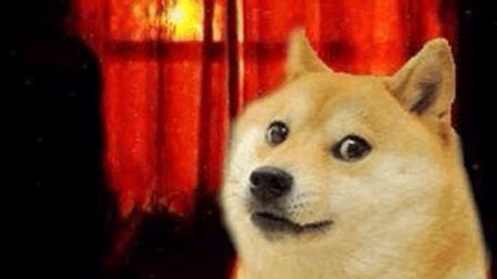 【背包】高能慎入! 90年微笑狗的恐怖事件。附赠高清图片以及应对方案。