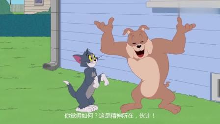 新猫和老鼠: 离开汤姆之后, 杰瑞感觉日子开心多了!