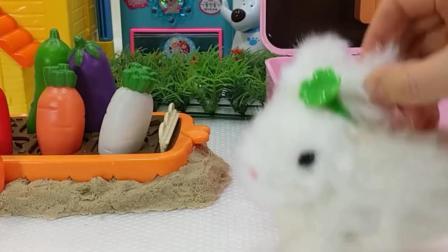 小白兔超爱吃胡萝卜 真好吃呀