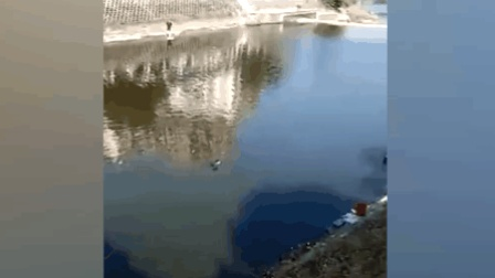 女子洗衣掉河里 2路过辅警跳河救人