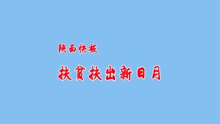 陕西快板《扶贫扶出新日月》