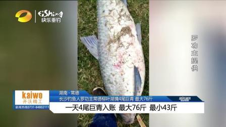 罗功主柳叶湖钓76斤大鱼VA0