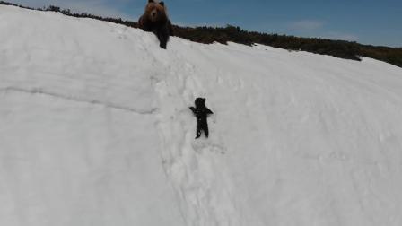 熊宝宝雪山追母亲看得人掉泪 屡次滑下雪山 永不言弃坚持登顶
