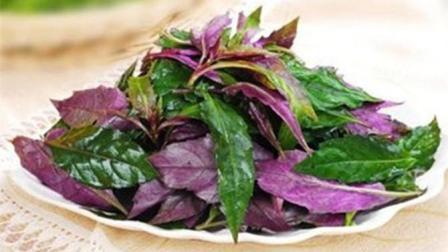 这三种蔬菜吃了会致癌, 大家最好不要买, 真是要命的节奏啊!
