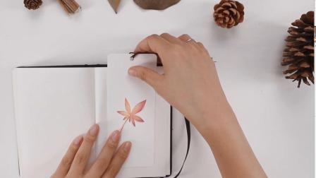 最适合秋天的彩铅手绘: 和小朋友一起画一个枫叶书签