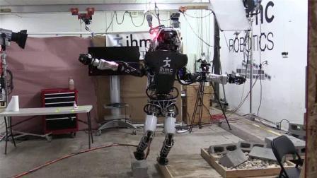 世界上最蠢的机器人, 头脑简单四肢不发达, 人工智障?