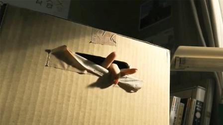 日本恐怖片《AKB恐怖夜肾上腺》女孩被做成快递装进箱子里