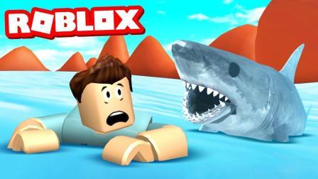 小格解说 Roblox 鲨鱼模拟器: 购买炫酷特警快艇! 还有骷髅大鲨鱼?