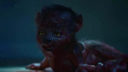 女子怀孕后, 开始喜欢吃生肉, 最后生下了一个毛茸茸的小怪物