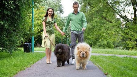 医师考试影像培训--潘庆山阿呆的视频之家之宠物医疗