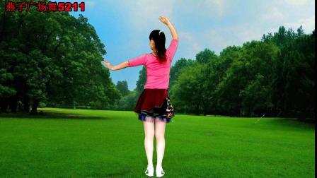 燕子广场舞5211《呼伦贝尔大草原》演唱: 降央卓玛 附分解动作 简单好看