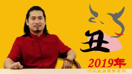 2019年生肖牛运势如何一起听听坤元老师怎么讲