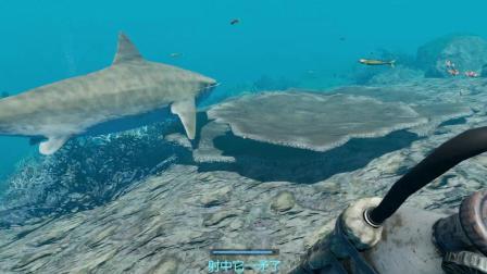 荒岛求生17: 本想拿着气枪去打鲨鱼, 结果这鲨鱼的皮还真是厚啊