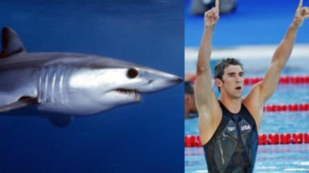 这款鲨鱼皮泳衣, 有啥黑科技? 被国际泳联禁赛!