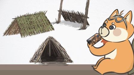 贝爷那些野外求生的庇护所都是怎么搭建的?