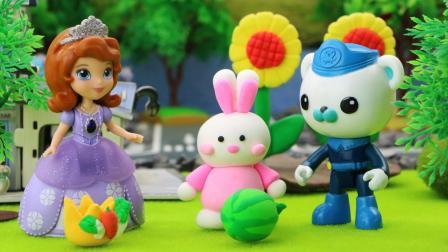 小公主苏菲亚获得了第三届蔬菜水果大王比赛的冠军