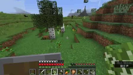 Minecraft男人的浪漫幻凌大陆的真正勇者RPG生存四热爱环保植树造林的左小左