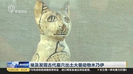 埃及发现古代墓穴出土大量动物木乃伊  新闻夜线 20181111