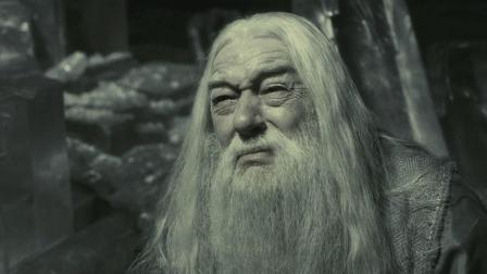 哈利波特系列从头看, 邓布利多教授之死&混血王子的真实身份是谁?