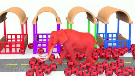 色彩学习 狮子 恐龙 老虎 大猩猩 用足球 染色变身 玩具动画
