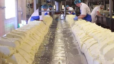 风味人间: 奶酪的加工, 从牛奶到装盒, 过程看着太舒服