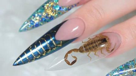 创一科论 墨西哥流行蝎子美甲把毒蝎带在指甲上