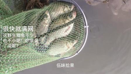 钓鱼小技巧, 学会这1招, 钓鱼不少又不小 。一会儿就满网了! 你学的会不?