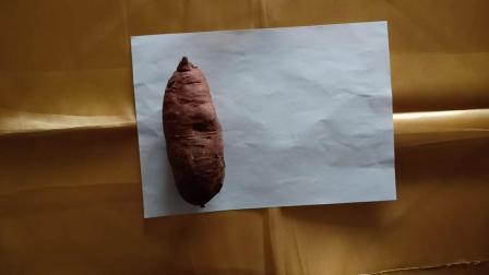 一尘脱口秀红薯怎样长久保存