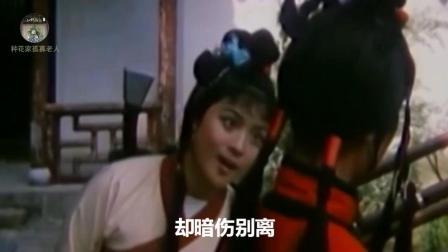 怀旧影视金曲  1987年国产老电影《金镖黄天霸》插曲《伤别离》-毛阿敏