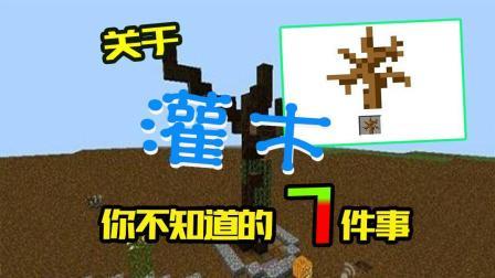 我的世界: 关于枯死的灌木你不知道的7件事, 游戏里它还有影分身?