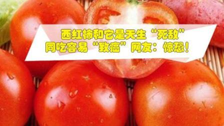 """医生劝诫: 西红柿和它是天生""""死敌""""同吃容易""""致癌""""网友: 惊恐!"""