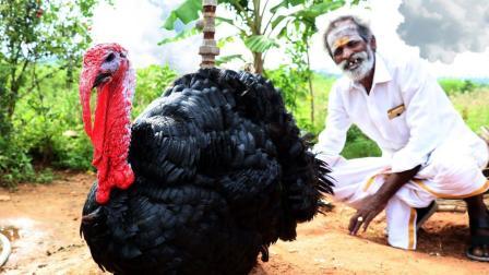 印度大爷野外铝锅炖火鸡, 配着大白米饭, 直接用手抓着吃好过瘾!