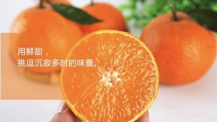 爱媛38号果冻橙新鲜水果当季特价包邮现摘现发孕妇小孩吃水果橙子