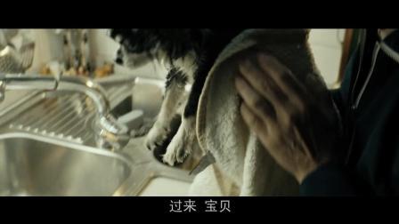 犬舍惊魂: 这狗也是真厉害了, 冰箱里待了这么久, 居然还没