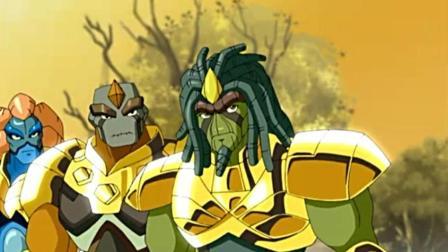 高米迪: 黄金高米迪为腐蠕踏上寻找之旅, 你却在精神上支持他们!