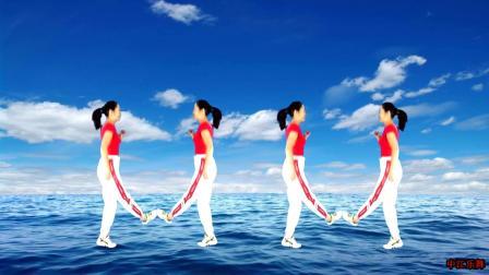 激情动感双人对跳广场舞《踏浪》