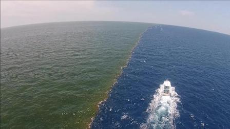 这是最奇特的海域, 自带三八线, 两片海百年都无法融合!