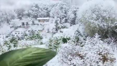 鹅毛大雪突访兰州 市民拍摄极致画面刷爆朋友圈
