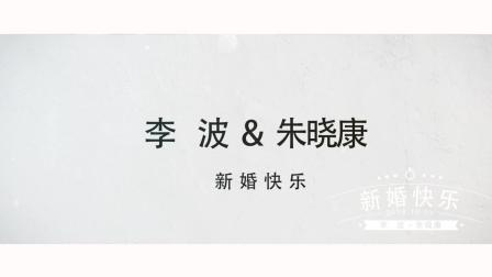 2018年10月3日河北邯郸李波&朱晓康婚礼花絮