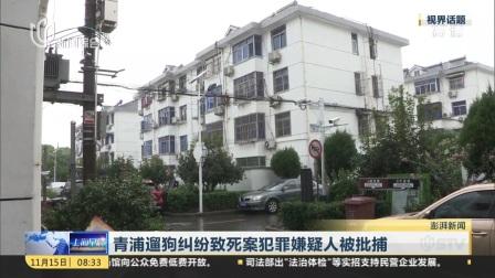 青浦遛狗纠纷致死案犯罪嫌疑人被批捕 上海早晨 20181115