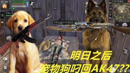 明日之后罗修解说: 娇气狗不吃骨头要吃肉 叼回AK47火麒麟?