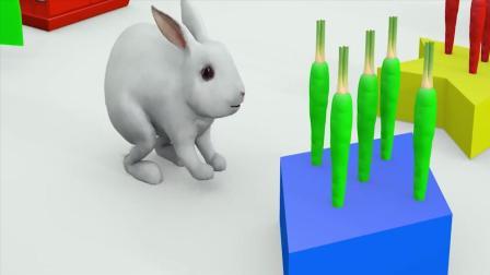 幼儿色彩启蒙: 3D小兔子吃胡萝卜变成不同颜色, 学习颜色和形状