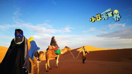 一生中不得不去的地方, 三毛笔下的撒哈拉