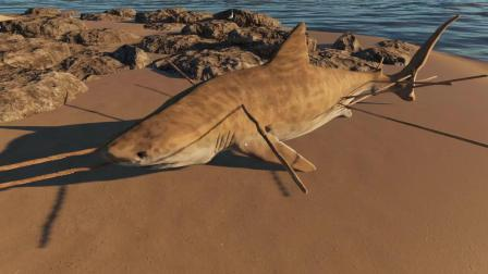 小乙哥荒岛求生06: 潜入海底猎鲨鱼, 夕阳烤肉香味四溢, 好吃吗