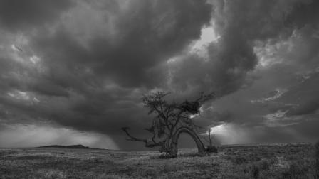 黑白摄影大师段岳衡的影像之路