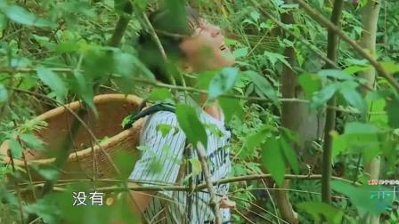 变形计: 农村二哥展现厉害的爬树技巧, 城里儿子都看懵, 摄影组四次团灭